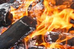 Coals of campfire closeup Royalty Free Stock Image