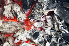 The coals of a campfire in the forest closeup. Wallpaper, tree, power, glowing, coal, carbon royalty free stock photos