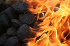 Coals on fire. Coals in a camping fire burning brightly Royalty Free Stock Images