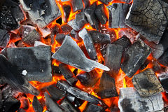 Coals in the fire Stock Photography