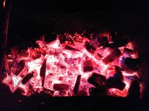 Coals. Red fire hot night Stock Images