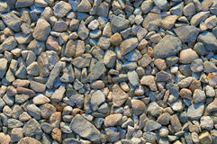 Coarse gravel texture or background Royalty Free Stock Photography