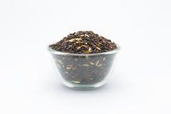 Coarse organic black rice Stock Photography