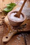 Coarse salt Royalty Free Stock Image