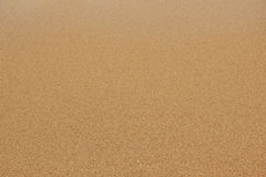 Coarse sand background texture Stock Image