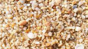 Coarse sand texture background Stock Photography