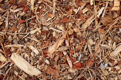 Coarse wood chippings background. Coarse wood chippings as an abstract rough background texture - wood, twigs and leaves stock photo