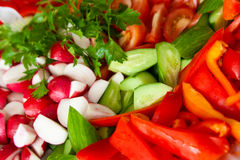 Coarsely chopped vegetables. Coarsely chopped fresh cucumber, tomato, radish, pepper and parsley stock photo