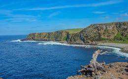Coasline в Terceira, Азорских островах стоковое изображение