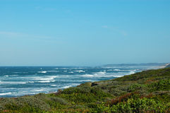 Coast. South African landscape at the sea: Beach View Indian Ocean, Port Elizabeth, South Africa Stock Photo