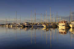 Coast 206. Sailboats in the Port Gardner Marina, Everett, Washington, USA royalty free stock images