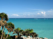 Coast. A tropical coast scene in maxico Royalty Free Stock Image