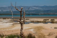 Coast of Adriatic sea, island Krk, Croatia. Sandy beach at the coast of the Adriatic sea. Puddles from the high tide and some dry grass. Mountain on the other royalty free stock photos
