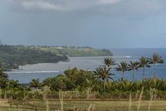 The coast along Kilauea Point, Kauai Stock Photos