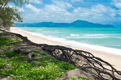 Coast of Andaman Sea in the Indian Ocean. Stock Images