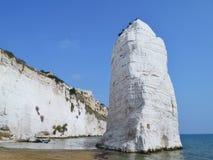 The coast of Apulia in Italy Royalty Free Stock Photos