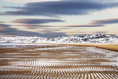 The coast of the Arctic Ocean at low tide Royalty Free Stock Photography