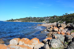 Coast area. Rocky coast in Port Lincoln, South Australia Royalty Free Stock Photography