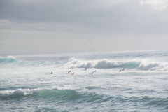 The coast of Atlantic ocean, ocean waves, winter on Tenerife, Ca royalty free stock image