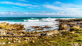 The coast on the Atlantic Ocean side of Cape of Good Hope Stock Image
