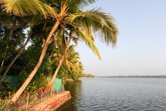 The coast of the backwaters at Kollam Stock Photography