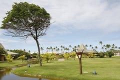 Coast of bahia, brazil Royalty Free Stock Photos
