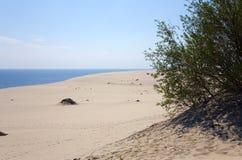 Coast of Baltic sea. Curonian Spit. Coast of Baltic sea Royalty Free Stock Photos