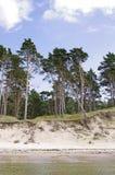 Coast of the Baltic sea Stock Photo