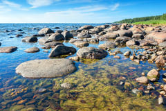 Coast of Baltic Sea. Estonia Royalty Free Stock Image
