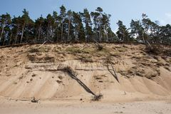 Coast of Baltic Sea Royalty Free Stock Image