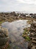 Coast. Beautiful coastal area, in the north of Asturias. Spain Stock Images