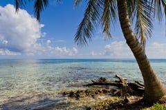 Coast of Belize Royalty Free Stock Image