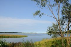 Coast of the big beautiful lake under the clear summer sky Stock Photos