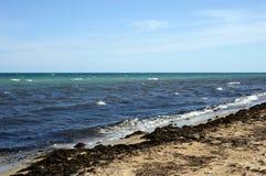Coast of the Black Sea. Evpatoria. Crimea. Royalty Free Stock Image