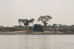 Coast of a Burmese river with trees. Coast of a burmese brown river, with trees and sandy beaches. Myanmar stock images