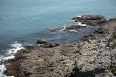 Coast, Busan, Korean Republic Royalty Free Stock Images