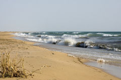 Coast of the Caspian Sea.  royalty free stock photo