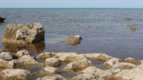 Coast of Caspian sea stock footage