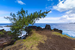 Coast close to Four A Chaux place, Reunion Island. During a sunny day Stock Image