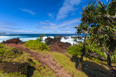 Coast close to Four A Chaux place, Reunion Island Stock Photography