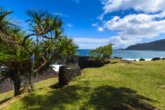 Coast close to Four A Chaux place, Reunion Island Royalty Free Stock Images
