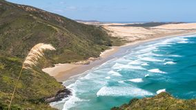 Coast, Coastal And Oceanic Landforms, Headland, Nature Reserve royalty free stock photography
