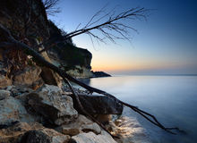 Coast. Consisting of limestone in Denmark  called stevns Stock Photography