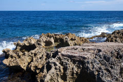 Coast from corals. Jamaica. Royalty Free Stock Image