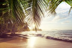Coast in Costa Rica stock photo