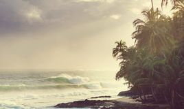 Coast in Costa Rica. Beautiful tropical Pacific Ocean coast in Costa Rica Stock Image