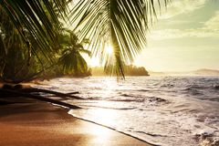 Coast in Costa Rica. Beautiful tropical Pacific Ocean coast in Costa Rica Stock Photos