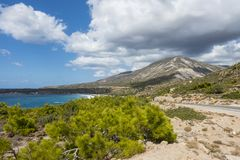 Coast of Crete island. Typical rocky with small trees coastline on Crete  , Greece , Europe Stock Images