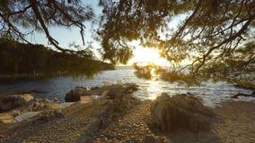 Coast of Croatia. Natural green coast of Croatia in autumn stock footage