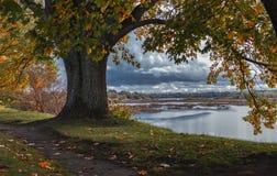 Coast of the Daugava. Autumn view of the old Daugava royalty free stock images